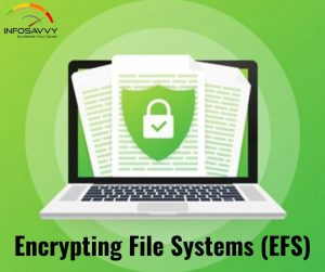 An Overview of Encrypting File Systems (EFS)